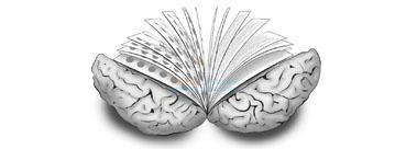 beyin-kitabi